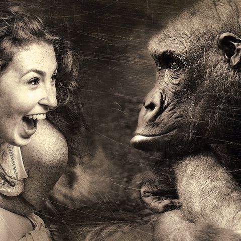 An artful black and white image of a human woman sitting and laughing wiTH. a gorilla.