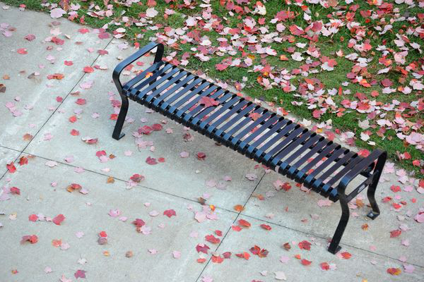 An empty bench sits covered in leaves on a fall day