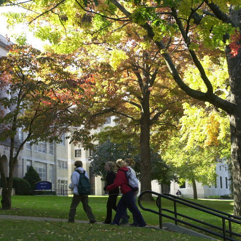 A group of students are walking to class on a bright fall day.