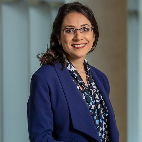 Sara Bayramzadeh, Ph.D., serves as coordinator and Elliot Professor in the HealTH.care Design Program in 肯特 State University's College of Architecture and Environmental Design.
